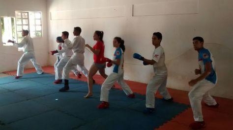 work karate 3